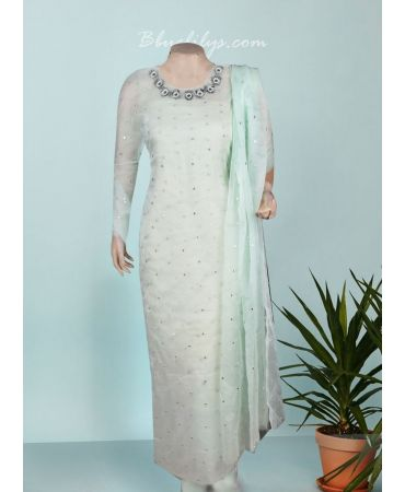 Pastel blue green organza with hand embroidery and organza dupatta