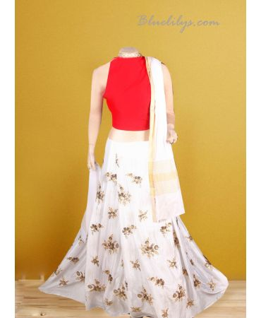 Chinnnon self embroidered skirt with red raw cotton top and dupatta